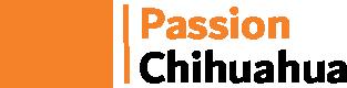 Passion Chihuahua